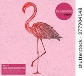 vintage sketch of flamingo.... | Shutterstock .eps vector #377904148