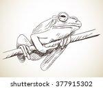 sketch of frog  hand drawn... | Shutterstock .eps vector #377915302
