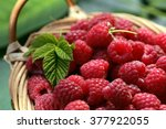 Raspberry Basket With Leaves