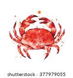 cooked crab  hand drawn seafood ... | Shutterstock . vector #377979055