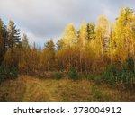 Autumn Landscape. View Of The...