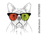 portrait of the bulldog in the... | Shutterstock .eps vector #378039085