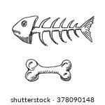 Fish Skeleton And Animal Bone...