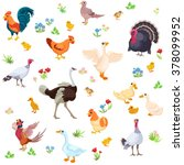 farm birds and their ducklings... | Shutterstock .eps vector #378099952