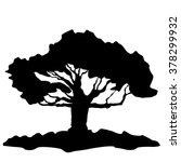 tree   vector tree   tree...   Shutterstock .eps vector #378299932