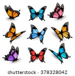 Stock vector big collection of colorful butterflies vector 378328042