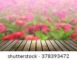 Blur Flower At Garden With Woo...