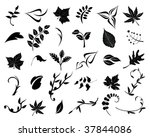 collection of leaves. easy to...