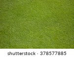Green Golf Green   Close Up