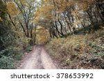 autumn forest | Shutterstock . vector #378653992