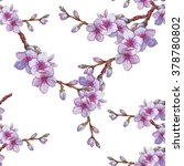 Watercolor illustration with sakura branch isolated on white background. Spring background. Japanese cherry blossom. Blooming apple flowers. Wedding card. Beautiful seamless pattern