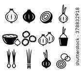 Onion  Spring Onions Icons Set