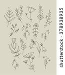 vector floral set. decorative... | Shutterstock .eps vector #378938935