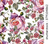 violet roses pattern watercolor ... | Shutterstock . vector #379104862