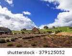 new winery converted from old... | Shutterstock . vector #379125052