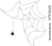 Vector Spider Spinning A Web O...