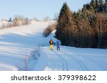 cross country skiing in the... | Shutterstock . vector #379398622