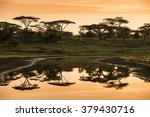 Sunset Reflection On African...