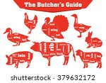 butcher meat cuts infographic...