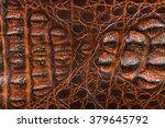 alligator patterned background   Shutterstock . vector #379645792