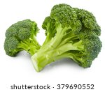 Fresh broccoli isolated on...