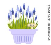 vector illustration with flower ... | Shutterstock .eps vector #379710418