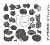 hand drawing fruit set. vector... | Shutterstock .eps vector #379731712