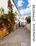 typical street of obidos  a... | Shutterstock . vector #379940788