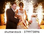 stylish  bride and groom in the ... | Shutterstock . vector #379973896