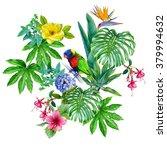 Rainbow Lorikeet Parrot In...