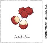 rambutan with slice. collection ... | Shutterstock .eps vector #380339566