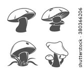 collection of mushrooms. vector ... | Shutterstock .eps vector #380366206