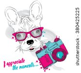 french bulldog with a camera.... | Shutterstock .eps vector #380425225
