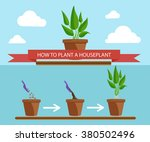 illustration of houseplants.... | Shutterstock .eps vector #380502496