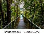 Hanging Bridges In Tropical...