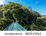Hanging Bridges In Forest  ...