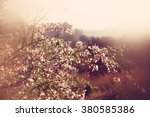 abstract dreamy and blurred... | Shutterstock . vector #380585386