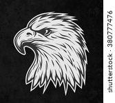 terrible eagle's head in... | Shutterstock .eps vector #380777476