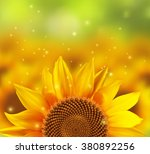 a blurred sunflower field with... | Shutterstock .eps vector #380892256