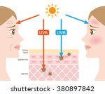 infographic skin illustration.... | Shutterstock .eps vector #380897842
