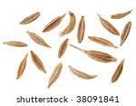caraway seeds | Shutterstock . vector #38091841