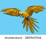 parrot flying hand draw and... | Shutterstock . vector #380965546