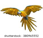 parrot flying hand draw and... | Shutterstock . vector #380965552
