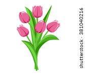 bouquet of pink tulips. vector...   Shutterstock .eps vector #381040216