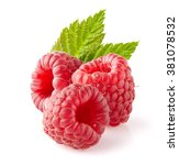 raspberry with leaf | Shutterstock . vector #381078532