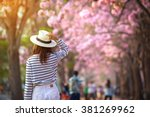 rear view of young woman trying ... | Shutterstock . vector #381269962