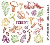forest set. collection of... | Shutterstock .eps vector #381312616