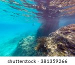 underwater views   views around ... | Shutterstock . vector #381359266