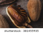 close up mahogany seed... | Shutterstock . vector #381455935