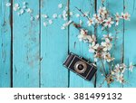 top view image of spring white... | Shutterstock . vector #381499132